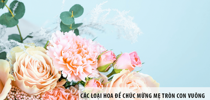 Các loại hoa để chúc mừng mẹ tròn con vuông